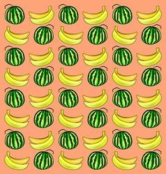 Watermelon and banana vector image