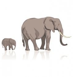 wild elephants vector image