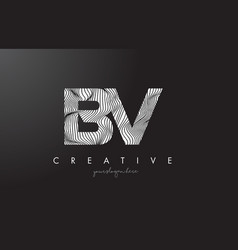 bv b v letter logo with zebra lines texture vector image