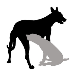 dog and puppy vector image