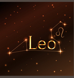fire symbol of leo zodiac sign horoscope vector image