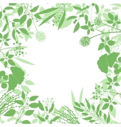 Green square background with collection of plants vector
