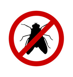 prohibition sign for flies on white vector image