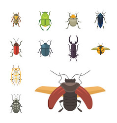Set of insects flat style design icons vector