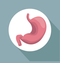 color background with circular frame stomach organ vector image