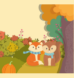 cute fox and squirrel with scarf and pumpkin hello vector image