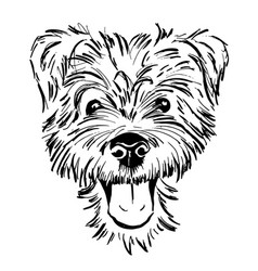 dog breed terrier vector image