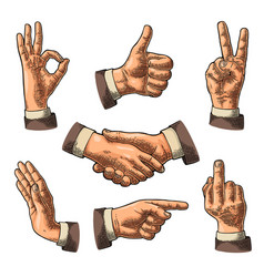 Male hand sign like handshake ok stop middle vector