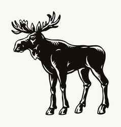 Moose vintage template vector