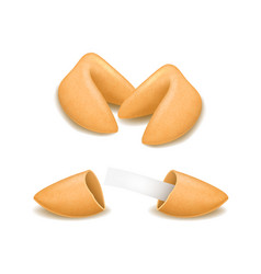 realistic detailed 3d fortune cookies set vector image