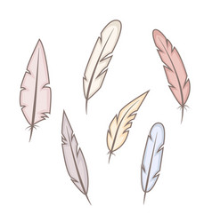 set of abstract bright wild feathers vector image