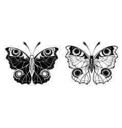two butterflies peacock vector image
