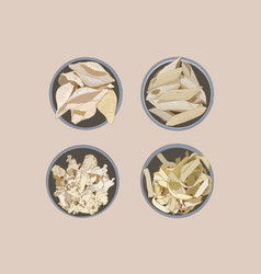 collection of home made pasta sketch vector image vector image