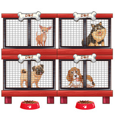 four types of dogs in cage vector image vector image