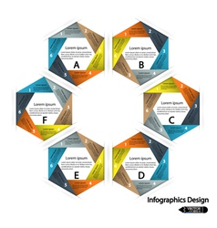 infographics options banner vector image vector image