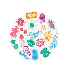 Colorful bacteria in circle shape isolated on vector