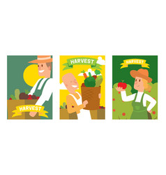 farmers picking vegetable harvest to baskets and vector image