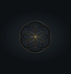 flower life symbol sacred geometry gold luxury vector image