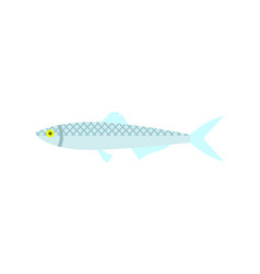 Herring fish isolated icon vector