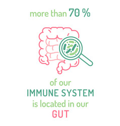 Medical poster with useful information about gut vector