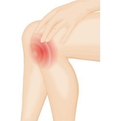 pain in the knee vector image