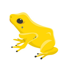 Poison dartfrog phyllobates terribilis a dangerous vector