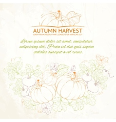 Pumpkins Autumn harvest vector