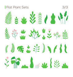 set different leaves and plants in a flat vector image