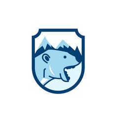 bear logo icon design vector image