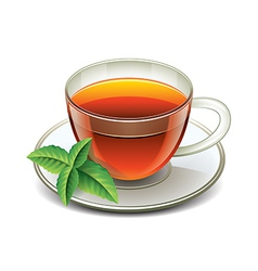 black tea cup isolated vector image