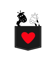 Cute cartoon black white giraffe in the pocket Boy vector