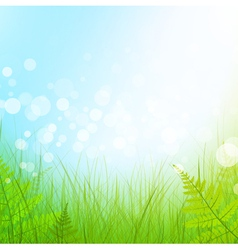 green grass meadow vector image