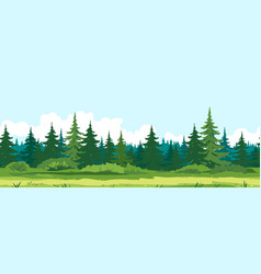 Path along spruce forest game background vector