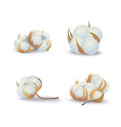 realistic detailed 3d cotton flowers set natural vector image