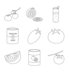 tomat and diet symbol set vector image