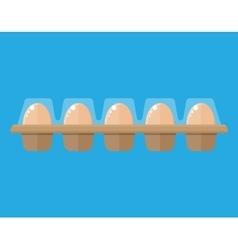 Chicken eggs in package vector image vector image