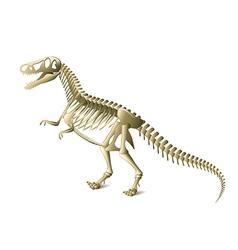 dinosaur skeleton isolated vector image