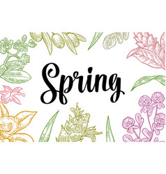 horizontal poster with flower blooming branch vector image