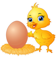 cute chick cartoon with eggs in a nest vector image