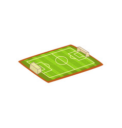 football or soccer stadium sports ground vector image