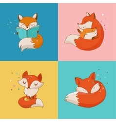 Fox characters cute and cards vector