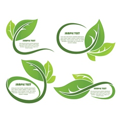 Leaves frames vector