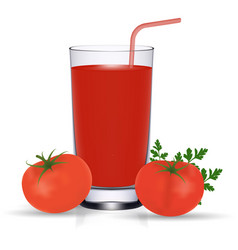 set of tomato juice and fresh ripe tomatos vector image