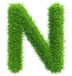 capital letter n from grass on white vector image vector image