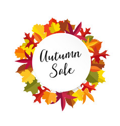 autumn fall sale banner with colorful leaves vector image