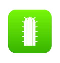 Cereus candicans cactus icon digital green vector