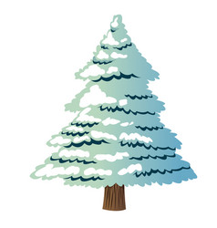 christmas pine tree decoration celebration vector image