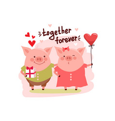 cute cartoon pigs couple and text vector image