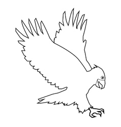 eagle line icon vector image