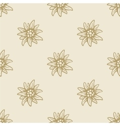 Edelweiss flower seamless pattern background vector image